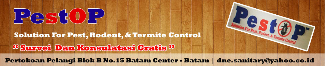 Anti-Rayap-Batam-Pest-Control-Pengendali-Hama-Batam